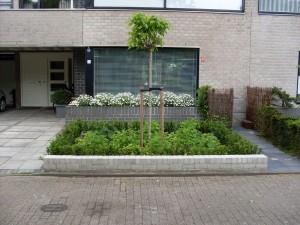 Tuin Aanleg - Oss