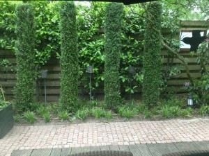 Tuin Aanleg - Uden