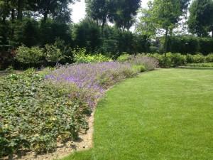 Tuin Aanleg - Beuningen